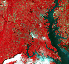False color satellite imagery
